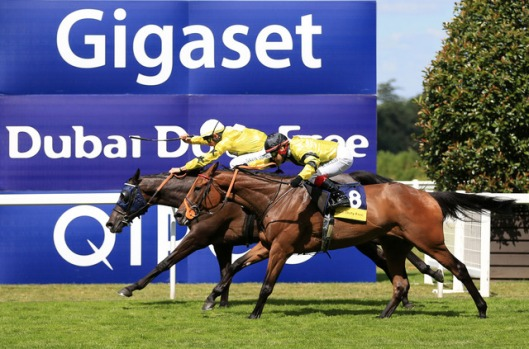 arch-villain-sea-of-heaven-horse-racing-races_3759081